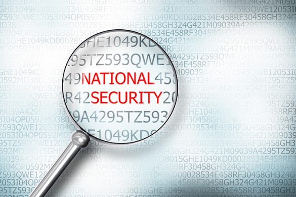 STEER National Security Featured Website